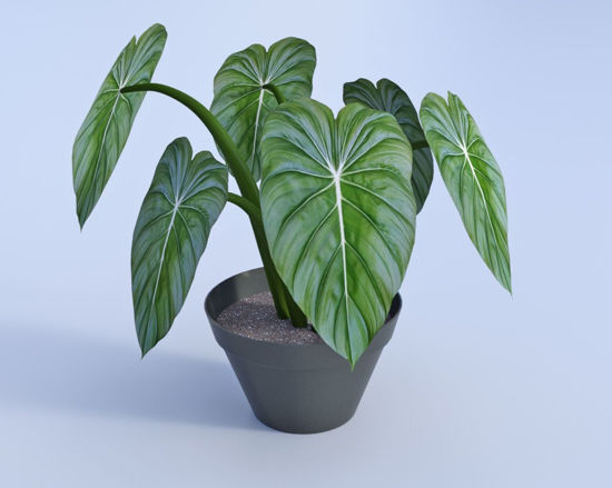Picture of Artificial Potted Plant Model Poser Format