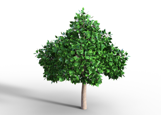 Picture of Big Shade Tree Model Poser Format