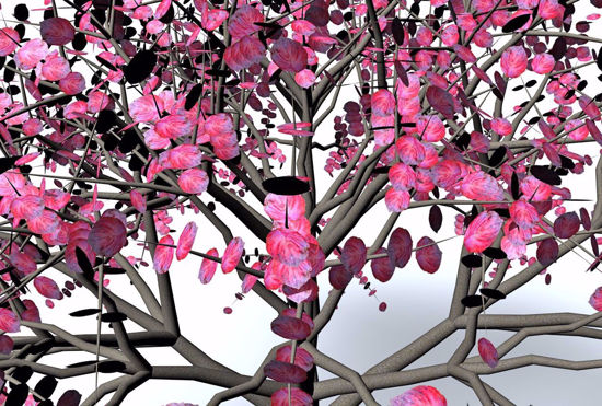 Picture of Dogwood Tree Models FBX Format