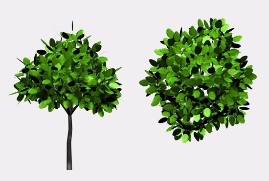 Picture of Landscaping Bush Model 2 FBX Format