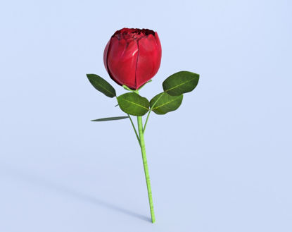 Picture of Long Stem Red Rose Model Poser Format