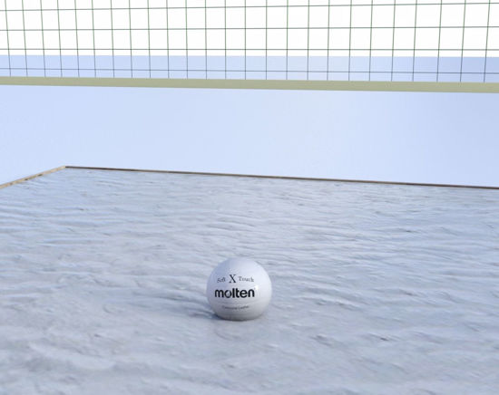 Picture of Volleyball Court Scene Poser Format
