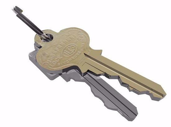 Picture of House Key Models Poser Format