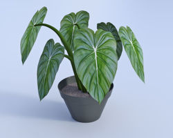 Artificial Potted Plant Model Poser Format