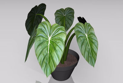 Picture of Artificial Potted Plant Model FBX Format