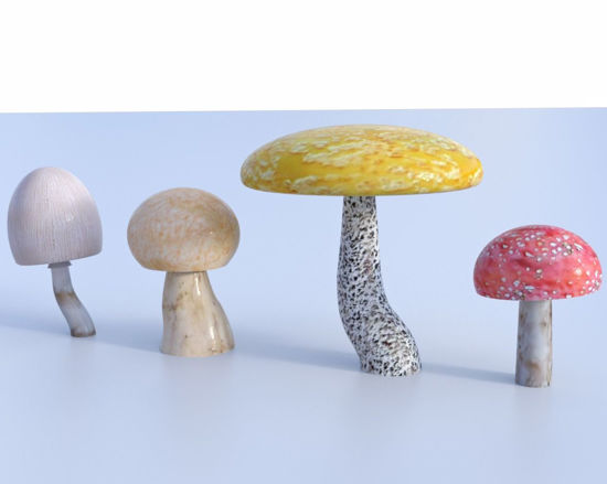 Picture of Mushroom Models Poser Format