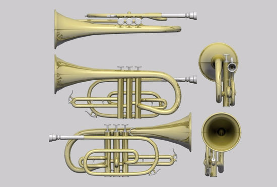 Picture of Cornet Musical Instrument Model FBX Format