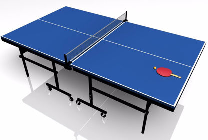 Picture of Ping Pong Table Model Poser Format