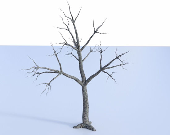 Picture of Dead Tree Model Poser Format