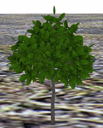 Picture of Landscaping Bush Model 3 Poser Format