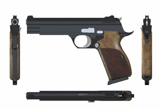 Picture of Sig Sauer P210 Pistol Weapon Model Poser Format