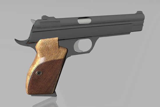 Picture of Sig Sauer P210 Pistol Model FBX Format