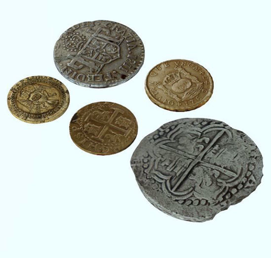Picture of Treasure Coin Models Poser Format