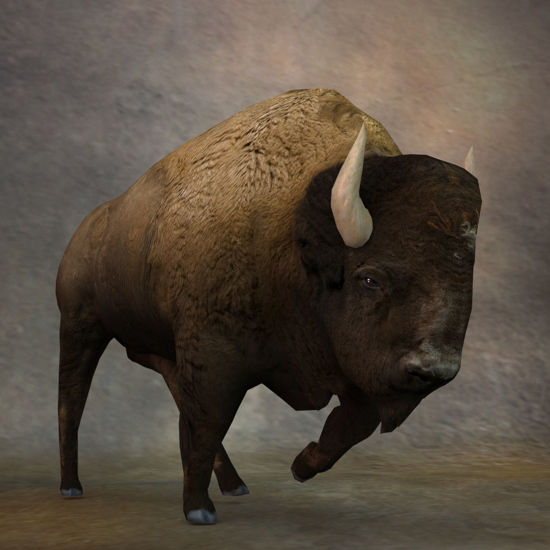 3D Bison figure (Buffalo) charging for Poser by PoserWorld rendered in SuperFly