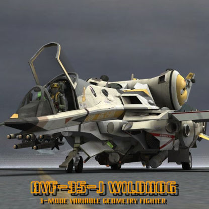 AVF-35-J Wildhog AVGF ( Mecha Aircraft Figure for Poser)