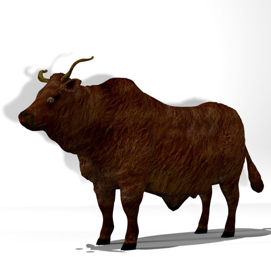 Cattle Multi- Breed (morphing figure & 12 cattle breed set for Poser),Wild Yak Steer rendered in Poser Firefly