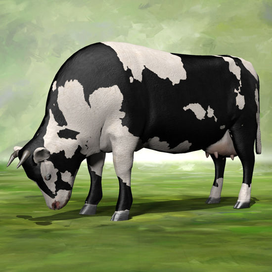 Cattle grazing pose rendered in Poser Firefly