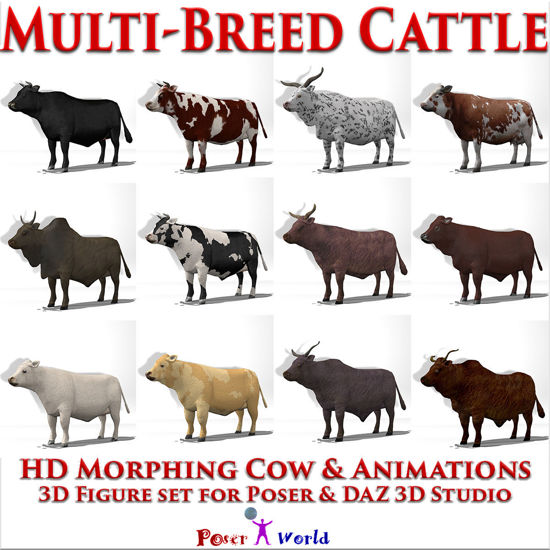 Cattle Multi- Breed (morphing cow figure & 12 cattle breed pose set for Poser