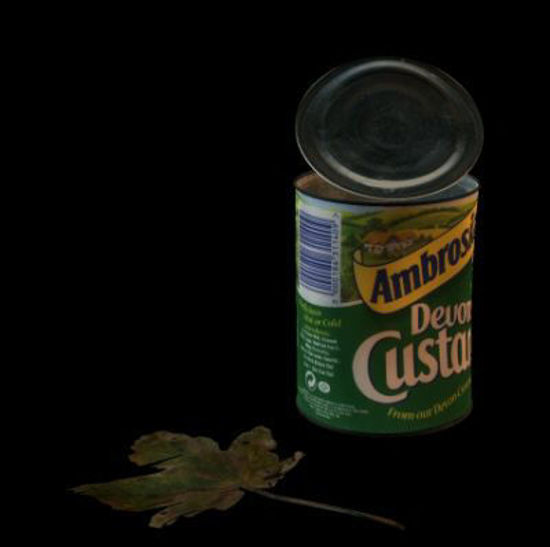 Picture of Old can and leaf Scatter a few around for realism