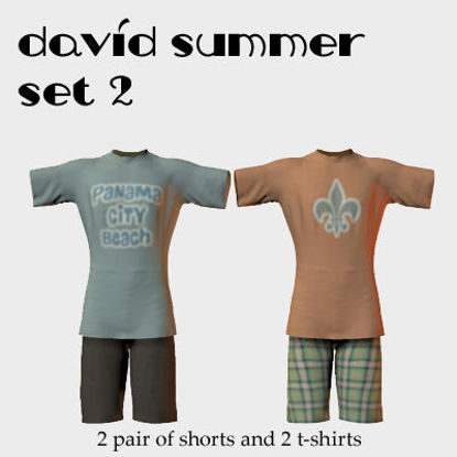 Picture of David Summer Dynamic Material Set 2 ( Add-On Texture Pack )