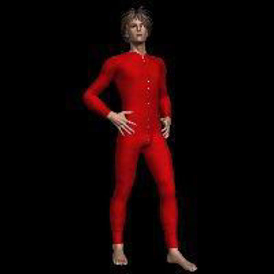 Picture of Longjohns for David (Poser / DAZ 3D David)