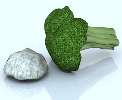 Picture of Broccoli and Cauliflower Florets Food Props