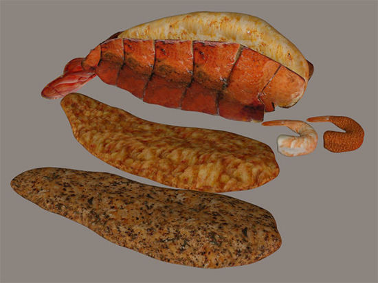 Picture of Seafood Food Models Set 1