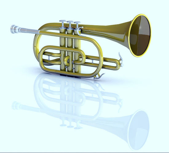Picture of Cornet Musical Instrument Model