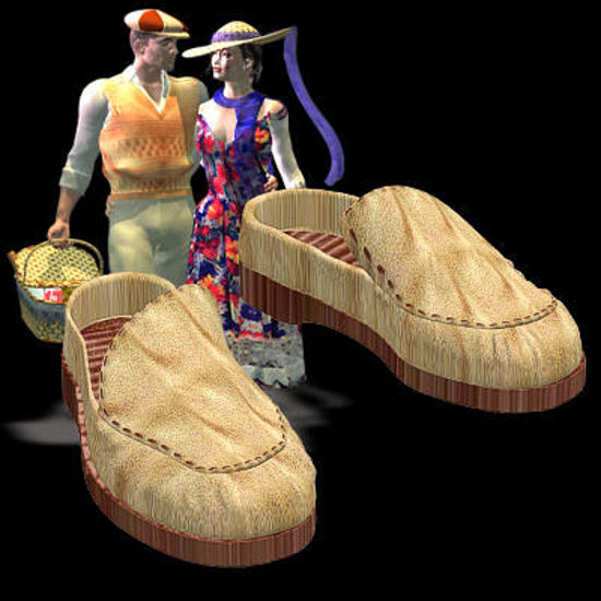 Picture of Romantic Picnic Soft Shoes - MIKEpicnicSoftShoes