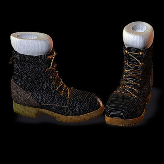 Picture of Combat Boots