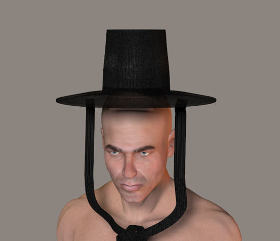 Picture of Ancient Korean Gat Hat Model