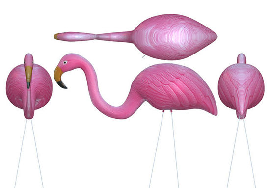 Picture of Plastic Flamingo Lawn Ornament Model - Poser and DAZ Studio Format