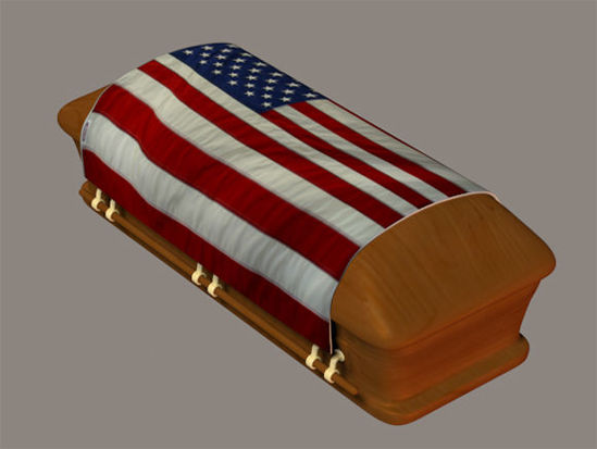 Picture of Patriotic Flag Draped Coffin Model