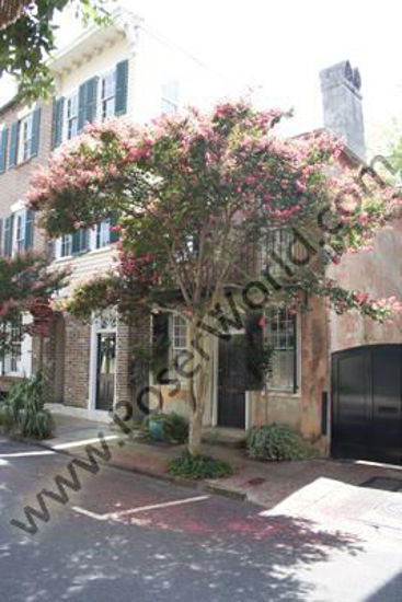 Picture of Charleston South Carolina Historic Home 6 -6210