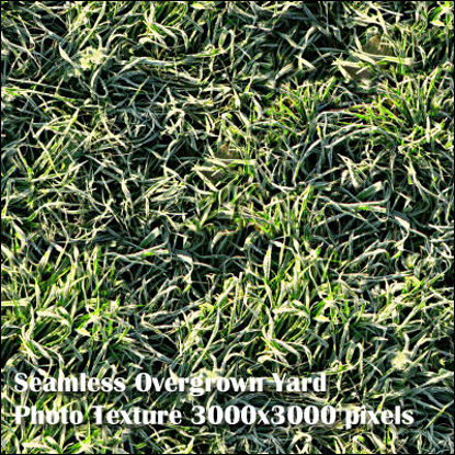 Picture of Eight Seamless Photo Textures of Grass and Yard 3000x3000 pixels - Weather-Damaged-Grass