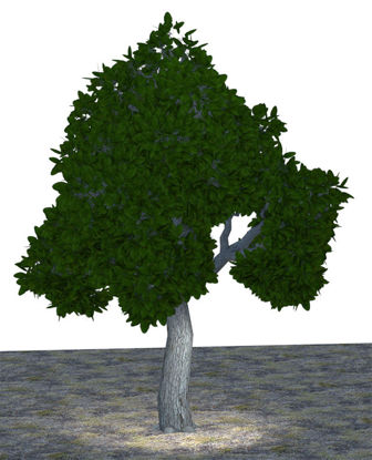 Picture of Large Green Tree Model