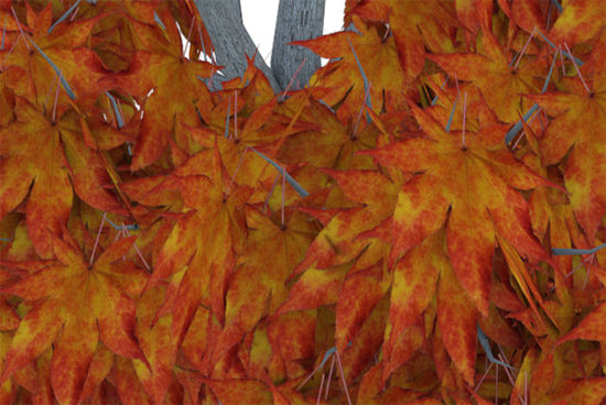 Picture of Medium Size Fall Maple Tree Model - Poser and DAZ Studio Format