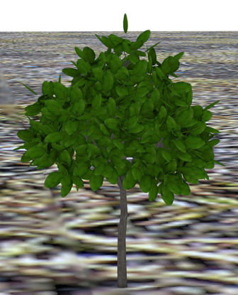 Picture of Landscaping Bush Plant Model 3 - Poser and DAZ Studio Format