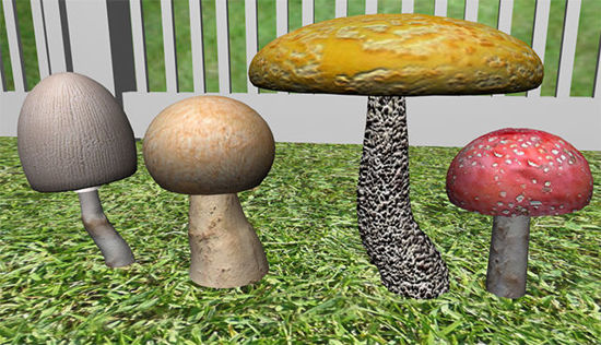 Picture of Mushroom Plant Models