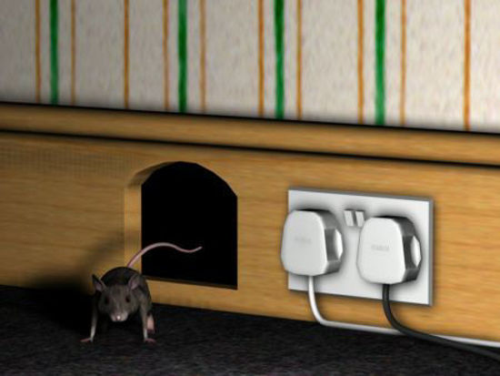 Picture of Mouse hole
