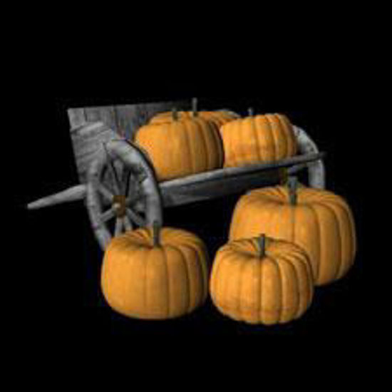 Picture of Pumpkins and Hand cart