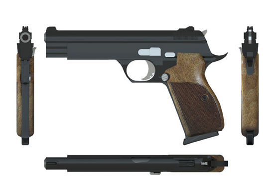 Picture of Sig Sauer P210 Pistol Weapon Model - Poser / DAZ Studio Format